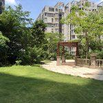 聚龙华府 — 小区内部环境与园林