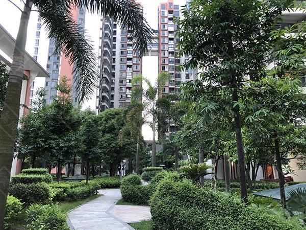 龙华上塘-鹏华香域花园