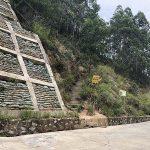 龙军花园 — 私家羊台山登山道