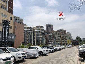 沙元埔村-民治地铁口零距离的潜力股
