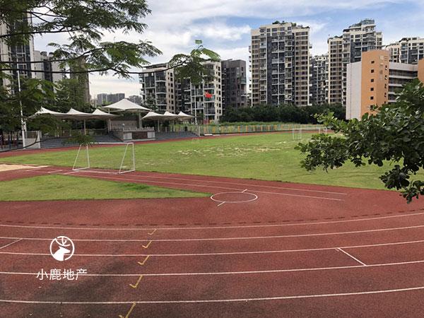 龙华民治中学足球场