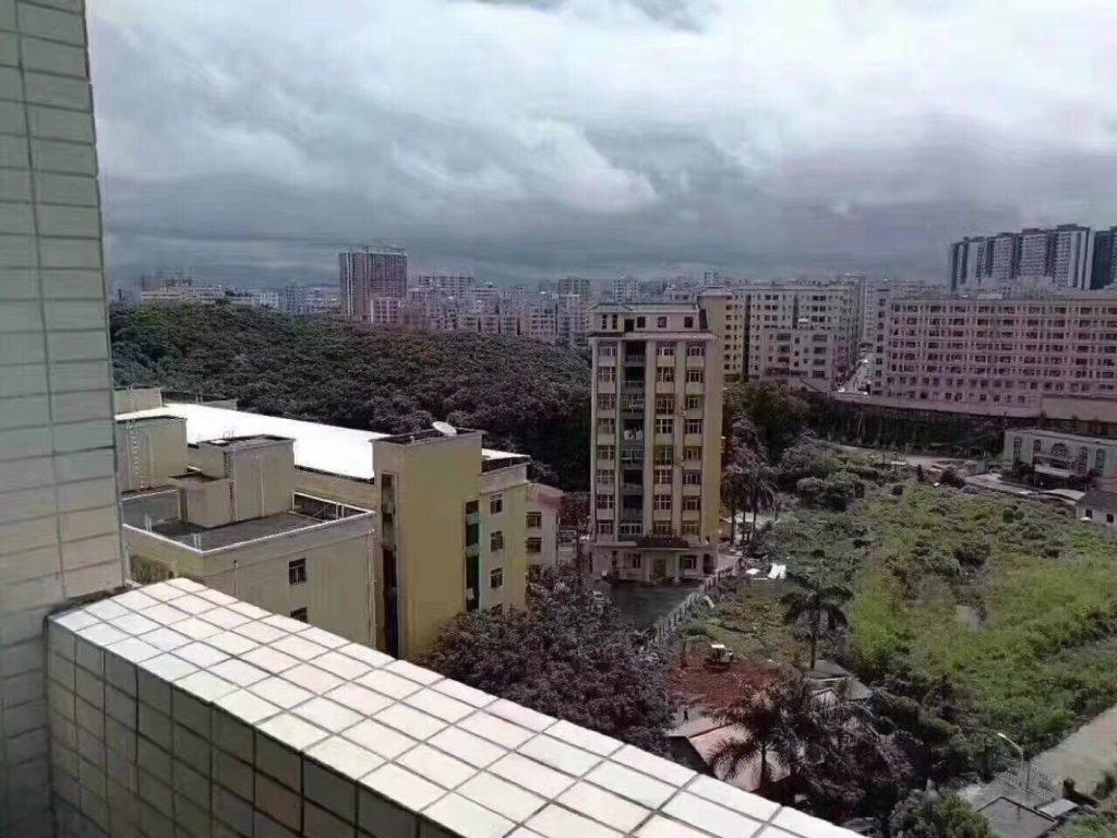 龙华 新城花园/宏泰雅苑